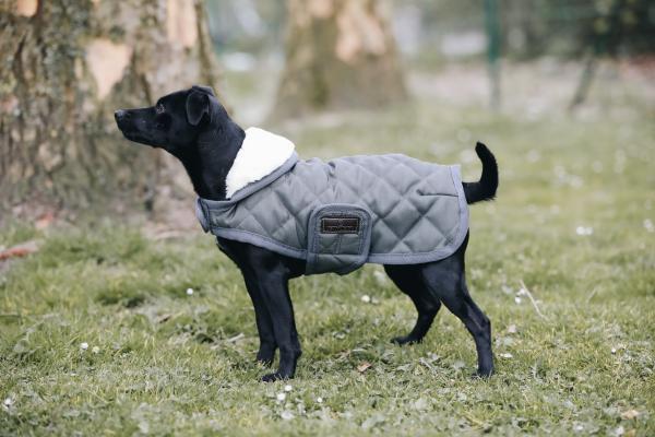 manta para perros