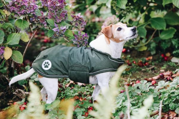 abrigo 1mpermeable