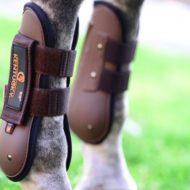 protectores de caballos