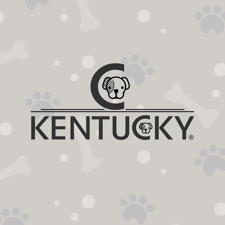 kentucky dogwear